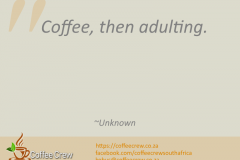 Coffee, then adulting. ~ Unknown